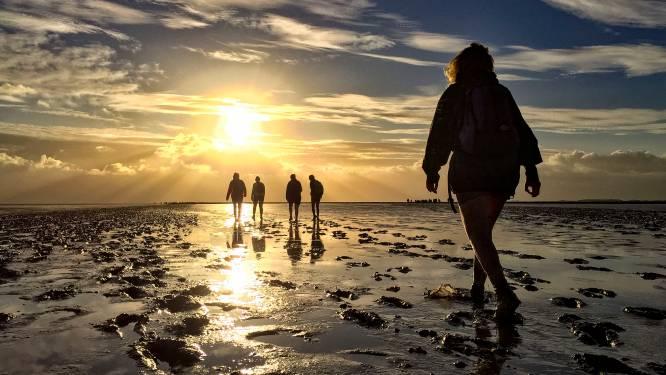 Internationaal natuurcongres roept Nederland op: geen nieuwe gaswinning onder Waddenzee