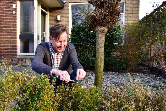 Martin Scholten bij zijn door buxusmotten aangetaste haagje dat deze lente toch weer uit begint te lopen.