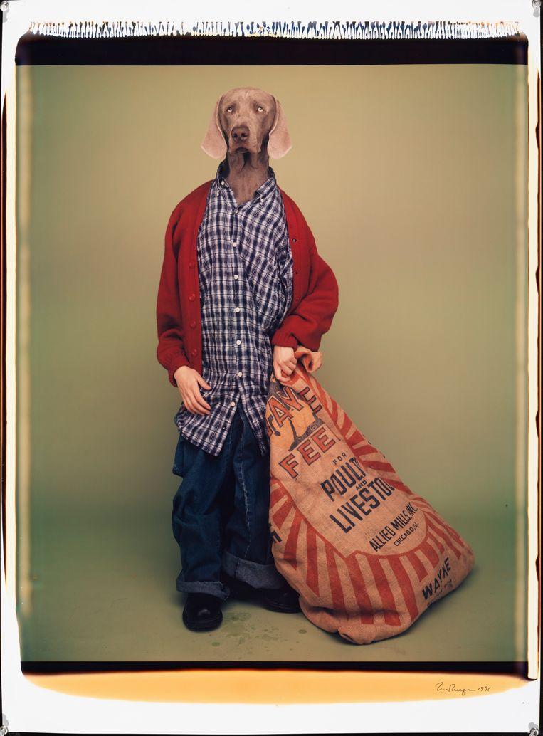 'Farm Boy' (1996). Beeld William Wegman