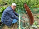 Ben Oonk (67) bij zijn mislukte oogst. De boosdoeners? Naaktslakken.