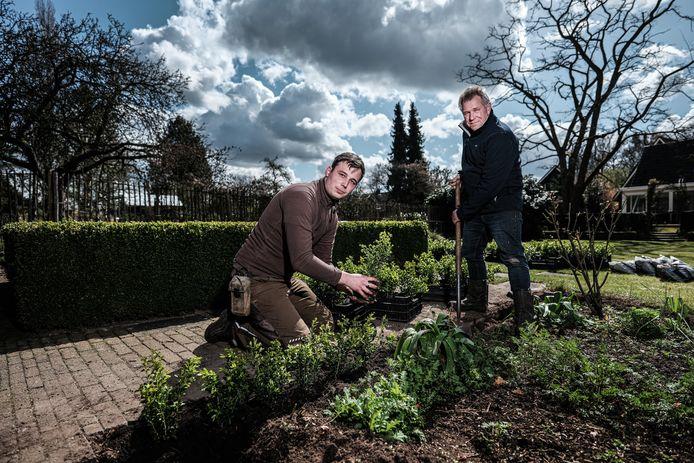 Steven Oostendorp plant in de tuin van Tonnie Buil (rechts) in Winterswijk de nieuwe buxussoort aan die geen last heeft van schimmel en de buxusmot.