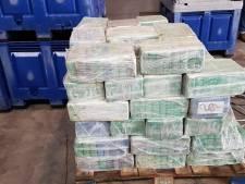 Zwijgende Colombiaan krijgt 4,5 jaar cel voor transport coke naar Oss: 'Een van de grootste vangsten ooit'