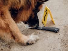 Niet alleen fout in Deventer Moordzaak: 'Meer strafzaken beïnvloed na gesjoemel met hondengeurproeven Oost-Nederland'