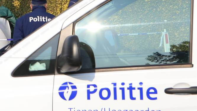Heethoofd die zich kant tegen politie-inspecteurs krijgt acht maanden cel