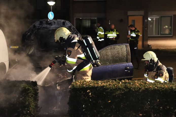 De brandweer wist de brand te blussen. De auto is wel total loss.