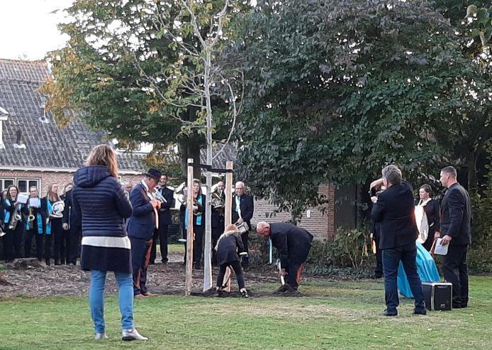 Feline Hozeman en Piet van den Bogert planten samen de notenboom in de tuin van de Hervormde kerk in Well.