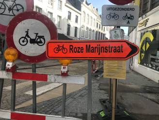 Rozemarijnstraat wordt 'Roze Marijnstraat' op verkeersbord