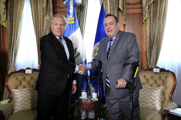 Luis Almagro, de leider van de Organisatie van Amerikaanse Staten, schudt de hand van de nieuwe Guatemalteekse president Alejandro Giammattei. Beeld via REUTERS