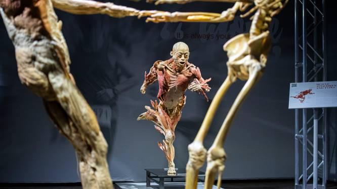 Lugubere expo 'Real Bodies' in Antwerps Sportpaleis verlengd