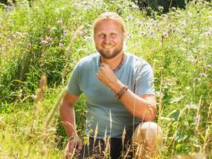 Vergeet de zonnebloem, zet een inheemse wilde plant in je tuin: 'Leefgebied van bijen en vogels staat onder druk'