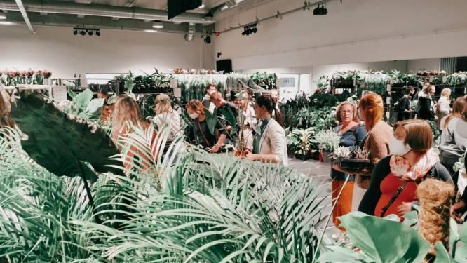 Door de planten snuisteren, dansen met Pat Krimson of ontwaken in het park? Vijf tips voor een zalig weekend in en rond Antwerpen