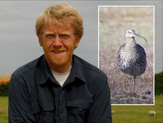 Vogelonderzoeker Gerrit Gerritsen spotte een wel heel bijzondere wulp in Dalfserveld.
