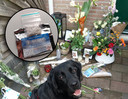 Hond Sem op de plek waar Gerjan na zijn overlijden met bloemen werd herdacht. 3mmc 3-mmc