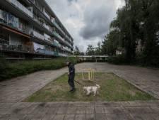 Wageningen wil verloederd speeltuintje aanpakken: 'Dit verdient nu niet de schoonheidsprijs'