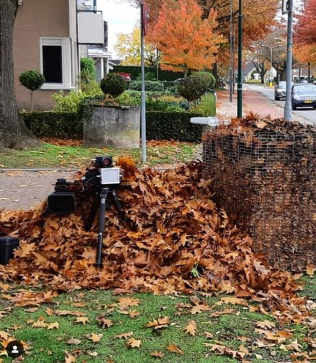 Politie verstopt flitsapparaat in berg bladeren in Brabant