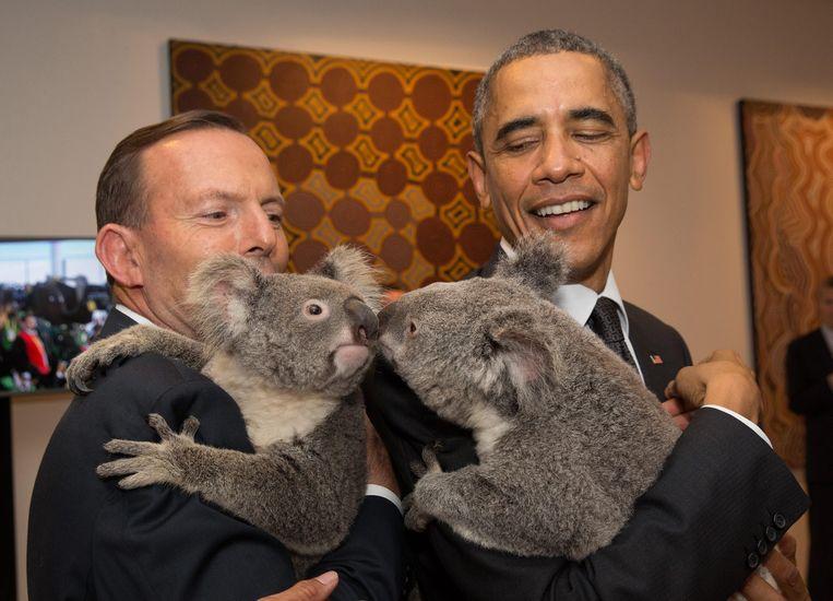 De Australische premier Tony Abbott (links) en de Amerikaanse president Barack Obama met koala's tijdens hun bezoek aan Brisbane tijdens de G20-top in 2014. Beeld EPA