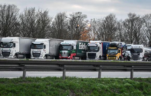 De transportfirma's zorgen volgens het arbeidsauditoraat voor oneerlijke concurrentie. (illustratiebeeld)