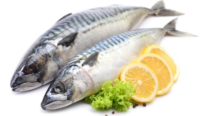 Herken jij de vis op je bord? Slechts een kwart van de Belgen slaagt voor deze test
