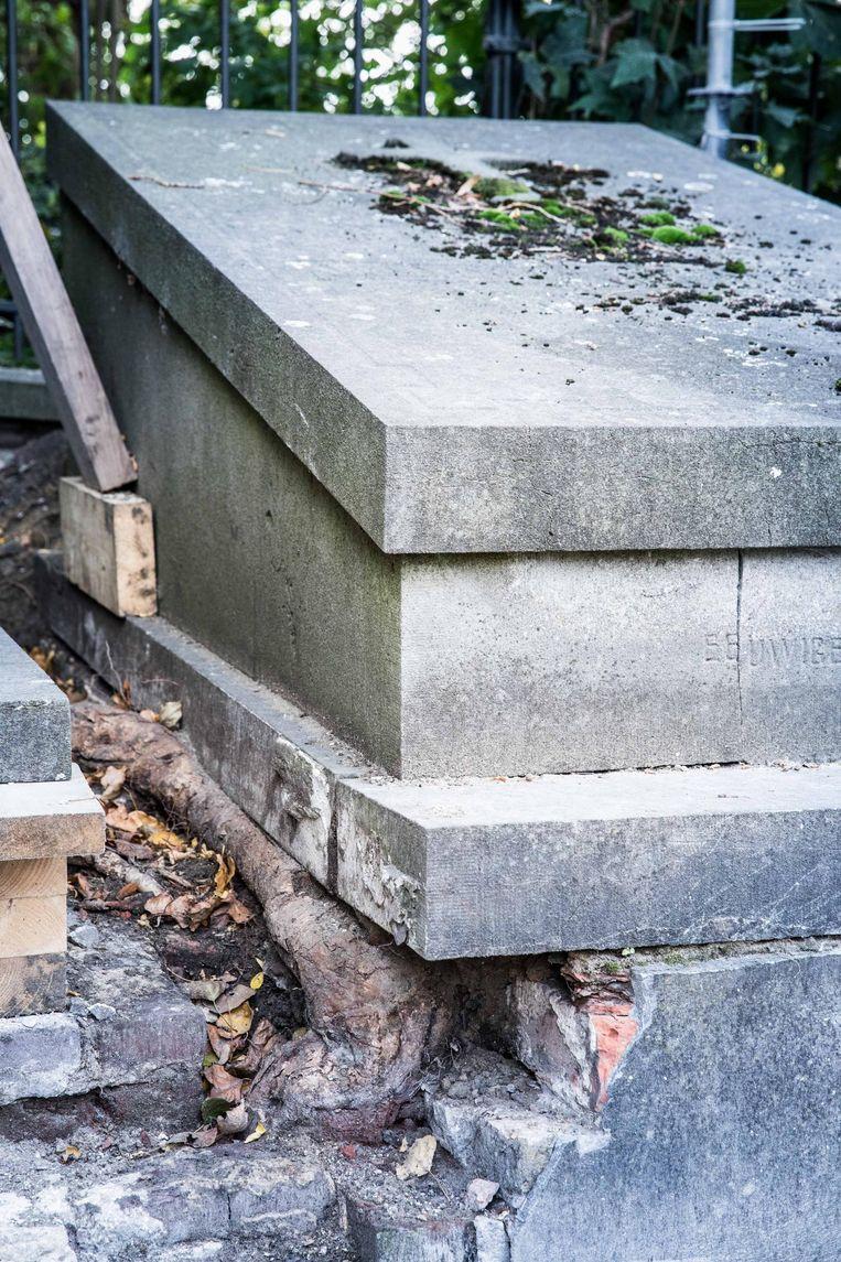 Nog andere graven hebben schade opgelopen door boomwortels
