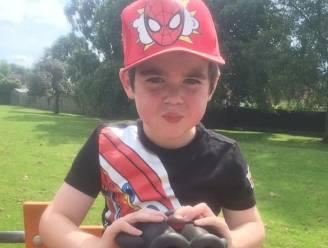 Britse overheid overweegt cannabisbehandeling voor zesjarige met zeldzame vorm van epilepsie