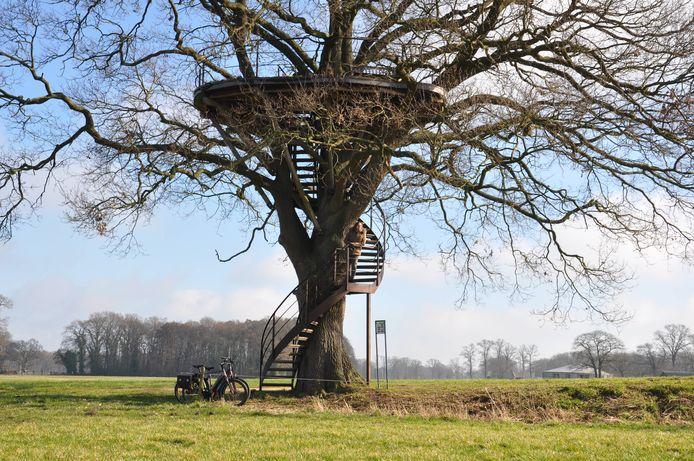 Verrassing onderweg is de boomtuin op Landgoed Westerflier bij Diepenheim.