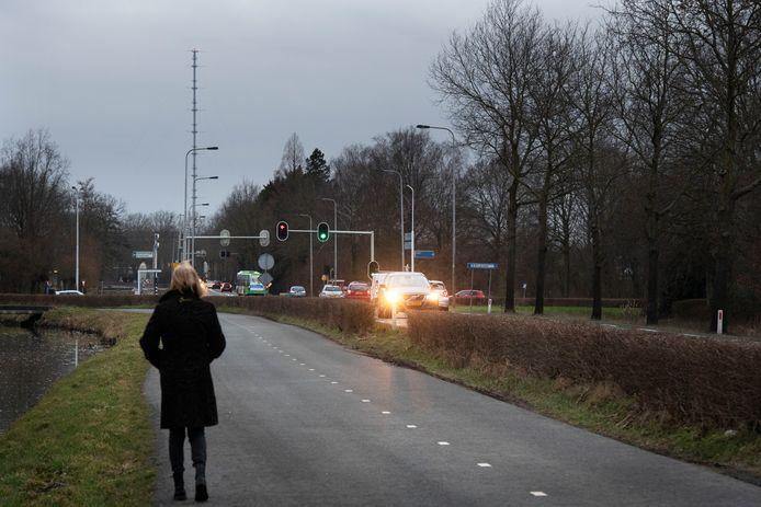 De parallelweg langs de Reinaldaweg