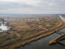 PvdD Flevoland verdenkt provincie van manipulatie onderzoek Oostvaardersplassen
