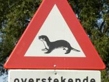 Ottertunnel Ziendeweg komt er toch