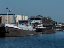 Waspikkers tegen uitbreiding bedrijventerrein Kerkvaartse haven: 'stop de verdozing'
