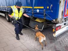 Straf voor mensensmokkel in de Rotterdamse haven: per illegaal drie maanden de gevangenis in