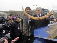 La France détruit trois tonnes d'ivoire