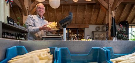 Het koele weer is gunstig voor de asperge: 'Tot eind van het seizoen kwaliteit op je bord'