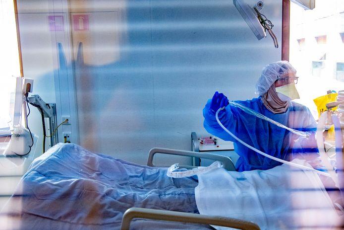 Corona, intensive care.