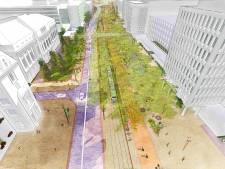 Plannen Coolsingel: meer ruimte fietsers en wandelaars