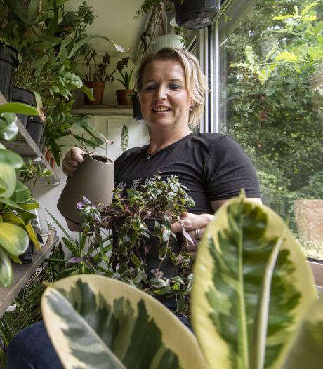 Een zielige plant in je vensterbank? Je kunt hem zaterdag omruilen in Borne