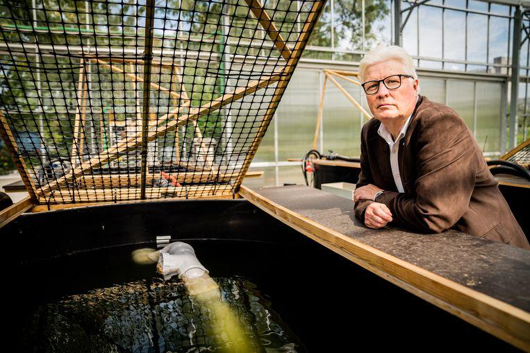 Ronny Blust: 'Er is een studie over vissen die van geslacht zijn veranderd, omdat ze te veel aan hormonen uit anticonceptie-middelen zijn blootgesteld. Er zijn ook gedragsveranderingen vastgesteld die aan farma-ceutische stoffen gelinkt kunnen worden.' Beeld Wouter Van Vaerenbergh