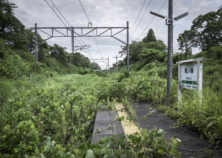 Wegens het risico op radioactieve besmetting mochten veel auto¿s het gebied rond Fukushima niet meer verlaten. Soms zie je een paar auto's tussen het groen, terwijl er honderden geparkeerd staan. Beeld Guillaume Bression - Carlos Ayesta