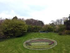 Mozaïek van 28.000 bloemen in het Zuiderpark in bloei