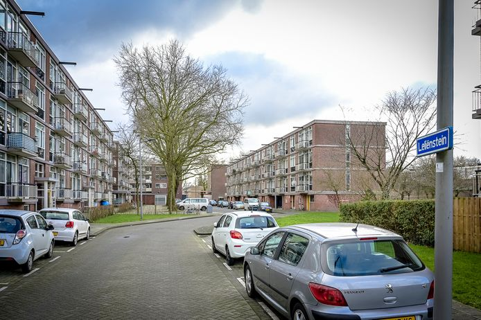 De Leliënstein in Rotterdam-Zuidwijk, nabij metrostation Slinge.