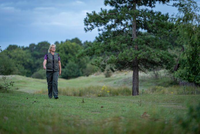 Boswachter Marijke Lieman van Staatsbosbeheer loopt tegen de schemering rond in boswachterij Westerschouwen. Nog iets donkerder en de nachtzwaluw laat van zich horen. Als je geluk hebt, want zit de broedtijd er op dan wordt het weer stil