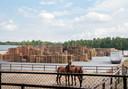 Pallethandel Ten Hove aan de Haspel in Ermelo groeide sinds 1981 uit tot een groot bedrijf met veel vrachtverkeer. Het kan op  deze plek niet gelegaliseerd worden, zeggen rechtbank Gelderland en Raad van State.