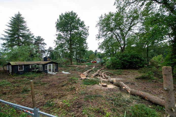 Bomen werden enkele jaren geleden gekapt op het terrein van de voormalige camping Bosvreugd bij Oudleusen. Die moet plaats moet maken voor een bungalowpark.
