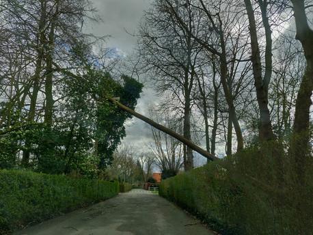 Foto van Stormweer richt heel wat schade aan