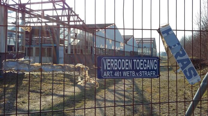 Het Amac-terrein in 's-Heerenhoek