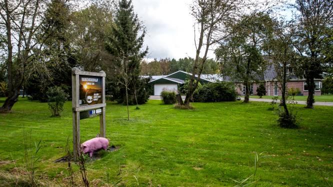 Varkenshouder Tijs uit Heeten wil 10.000 varkens meer houden maar mínder uitstoten: 'Hoop dat inspanning wordt gewaardeerd'