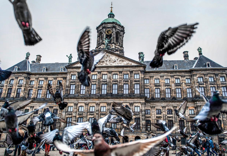 Het Paleis op de Dam is gebouwd toen Amsterdam zich op de piek van zijn koloniale macht bevond.  Beeld ANP