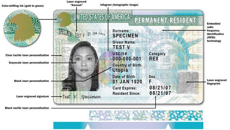 Een voorbeeld van een Amerikaanse greencard. Beeld AP