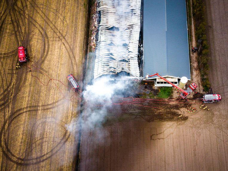 Bij deze stalbrand in het Brabantse Heusden kwamen duizenden varkens om. Beeld Hollandse Hoogte / Novum RegioFoto