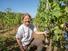 Esther Schoenmaker van Wagenings Wijngoed: 'Je gaat deze zomer proeven in de wijn'