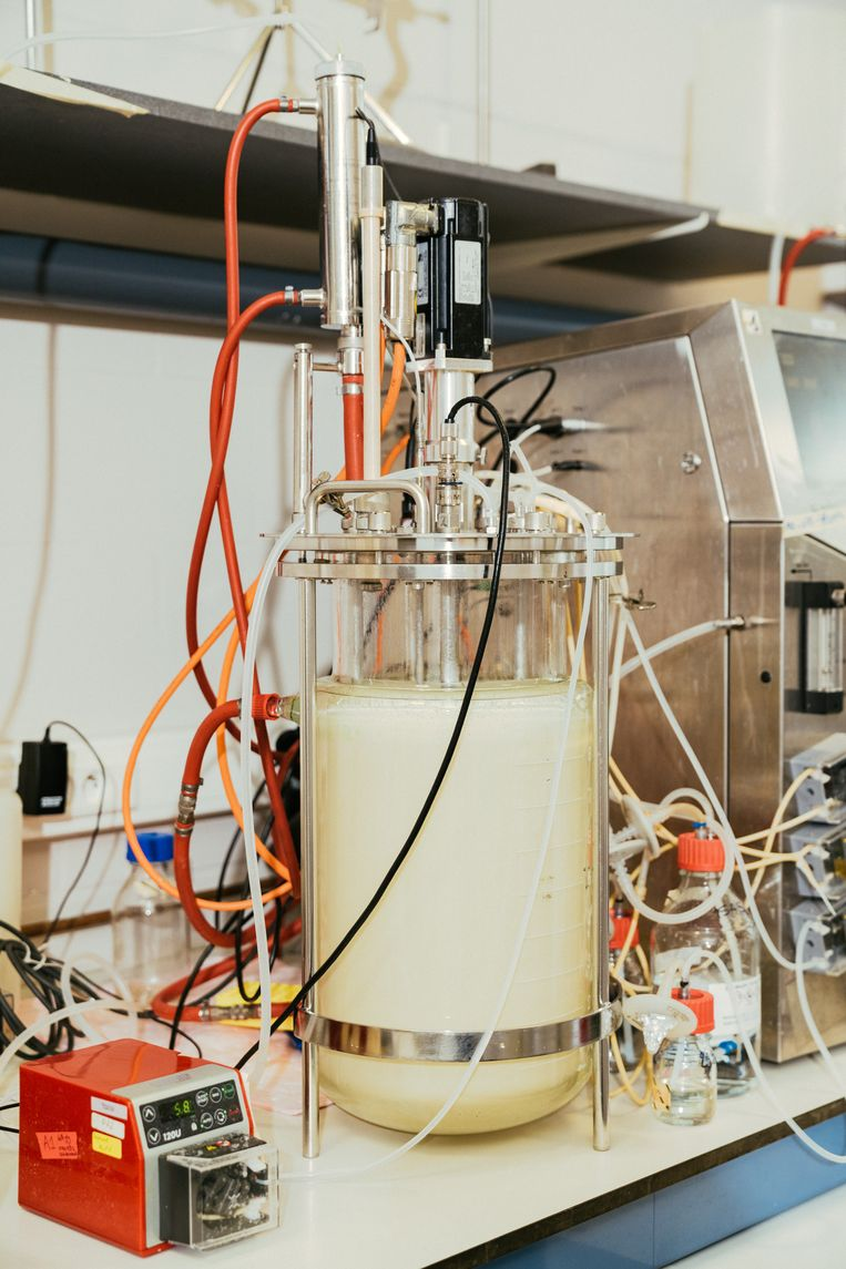 De fermentatietesten starten op kleine schaal in incubatoren. De beste kandidaat-micro-organismen komen al snel in fermentoren van 1 liter terecht, die verder opgeschaald worden tot 15 liter. Beeld Illias Teirlinck